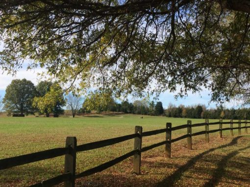 Camp Oak Hill Activity Field