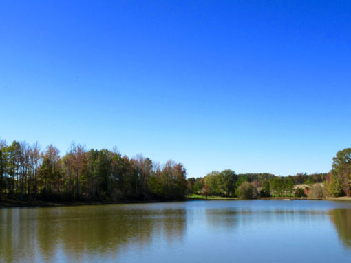 Camp Oak Hill Lake 3