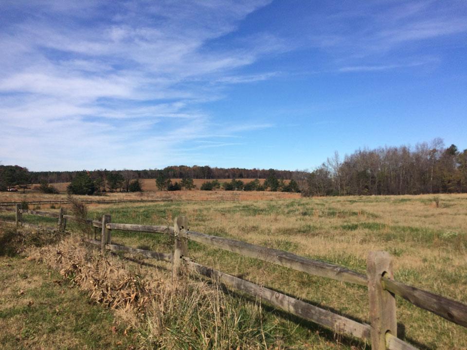 Camp Oak Hill Pasture